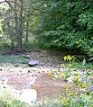 Bixby-State-Preserve Clayton-County,-Iowa Sunday,-September-4,-2011 g.jpg