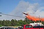 Black Forest fire (Image 1 of 32) (9034236244).jpg