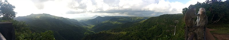Panorama of Black River Gorges National Park.