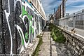 Blackrock Baths Are To Be Demolished (Ireland) - panoramio (20).jpg