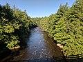 Blackwater Falls State Park WV 21.jpg