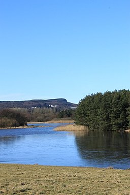 Blairadam Forest from Lochore Meadows - geograph.org.uk - 1733849
