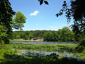 Blue Rock State Park Cutler Lake beach.JPG