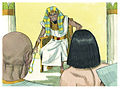 Book of Genesis Chapter 41-10 (Bible Illustrations by Sweet Media).jpg