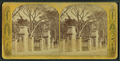Boston Common, from Robert N. Dennis collection of stereoscopic views 2.png