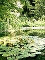 Botanical garden in Poznań17.JPG