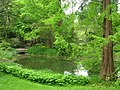 Botanischer Garten, Berlin-Dahlem - view - IMG 8649.JPG