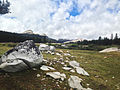 Boulders in Tuolumne Meadows.jpg