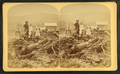 Bourdeau Family, Owl's Head Slide, Jefferson, N.H, from Robert N. Dennis collection of stereoscopic views 3.png