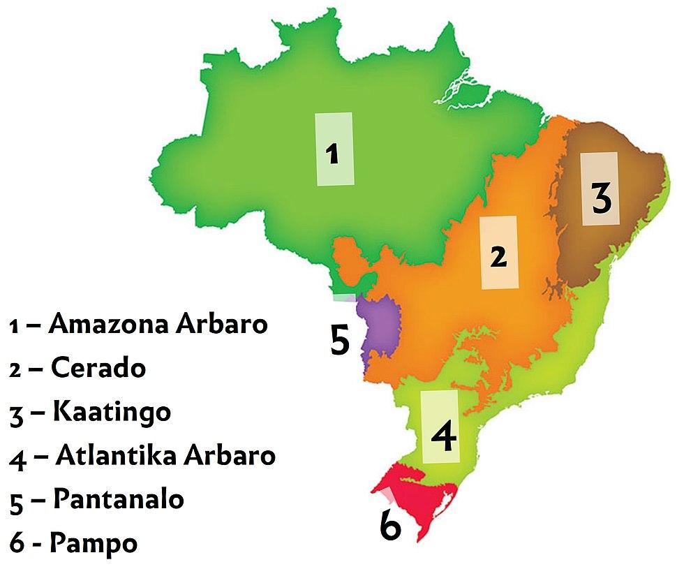 Brazilaj biomoj