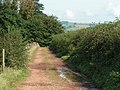 Bridleway heading toward Killerton from Culomjohn - geograph.org.uk - 969279.jpg