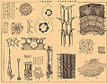 Brockhaus and Efron Encyclopedic Dictionary b65 344-0.jpg