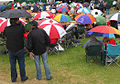 Brolly outbreak - geograph.org.uk - 1367159 (cropped).jpg