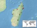 Brookesia distribution.png