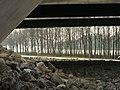 Brug Muiden - panoramio (2).jpg