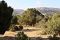 Bsaira District, Jordan - panoramio (70).jpg