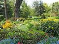 Bucarest Botanical garden 01.JPG