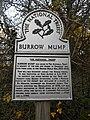 Burrow Mump 08.jpg