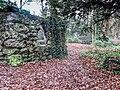 Bushy Park, Dublin -146439 (45754704984).jpg