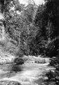 Byn Benahoe samt floden Karangana vid Benahoe med rottingbro (2 fotos) - SMVK - 010653.tif