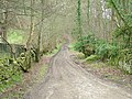 Byway to Elrington - geograph.org.uk - 396522.jpg