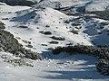 Căldarea Murgoci - panoramio.jpg