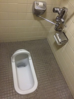 Toilets in Japan - A contemporary Japanese squat toilet