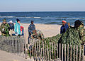 CBMU 202 Recycle Christmas Trees on the Beach DVIDS357709.jpg