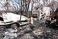 CSIRO ScienceImage 10470 Burntout vehicles at Strathewen after the Black Saturday bushfires.jpg