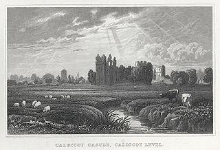 Caldicot Castle, Caldicot level, Monmouthshire