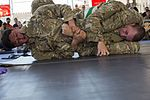Camp Lemonnier Combatives Tournament 170113-F-QF982-0840.jpg