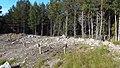 Canadian Dump (Mar Lodge Estate) (22SEP12) (06).jpg