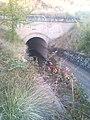 Canal Riaza tunel.jpg
