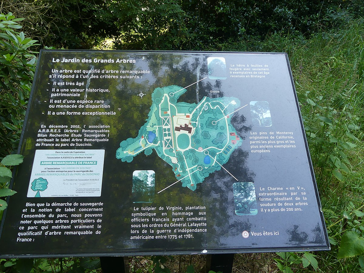 Jardin À L Américaine file:carte des grands arbres du jardin botanique de suscinio