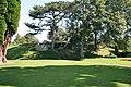 Castle gardens - geograph.org.uk - 938837.jpg