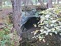 Cave entrance in sinkhole (8074406487).jpg