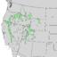 Cercocarpus ledifolius range map 2.png
