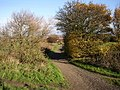 Chapel Hill Lane, Overton, Sitlington CP - geograph.org.uk - 280647.jpg