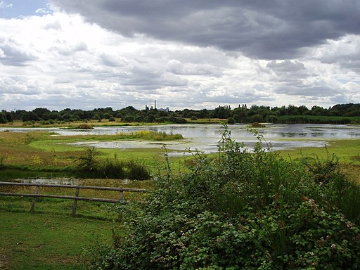 Chase Nature Reserve, London Borough of Barking & Dagenham, RM7 (2682552177)