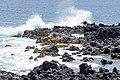 Chile-02876 - Rocky Shore (49072219853).jpg