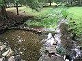 Clear spring water.jpg