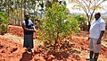 Climate smart agriculture in Machakos county (15453997230).jpg