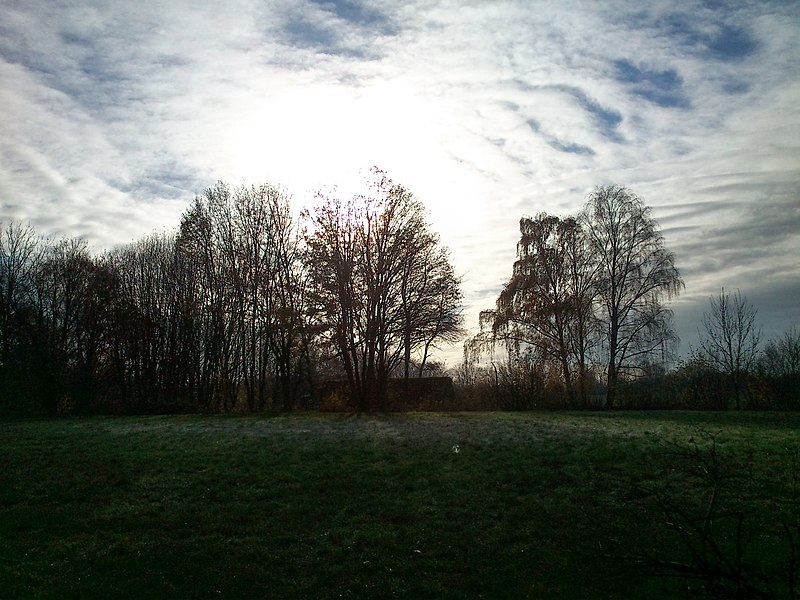 File:Close to Airwin, Dortmund, 26.11.13 - panoramio.jpg