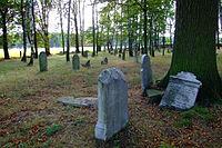 Cmentarz żydowski w Dobrodzieniu1.JPG