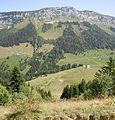 Col de Bornette depuis le crêt du Char.jpg