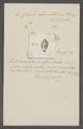 Conus lamellosus - - Print - Iconographia Zoologica - Special Collections University of Amsterdam - UBAINV0274 085 10 0014.tif