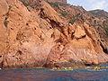 Corse-04921-réserve de Scandola.jpg