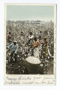 Cotton Pickers, South (NYPL b12647398-66877).tiff