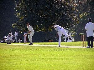 Cricket in Canada - Cricket match in progress in Stanley Park, Vancouver