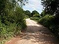 Crow, railway trackbed - geograph.org.uk - 1426902.jpg